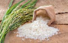 واردات برنج از ابتدای آذر تا انتهای تیرماه ۹۷ آزاد شد